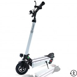 "electric scooter S8 X 13Ah (8"")"