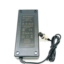 PULSE 10 charger 67,2V 2A